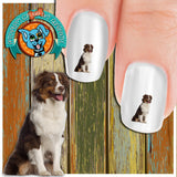 Australian Shepherd Side Glance Nail Art Decals (Now! 50% more FREE)