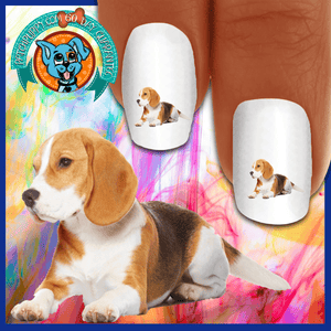 Beagle Oh those puppy eyes Nail Art Decals (NOW 50% MORE FREE)