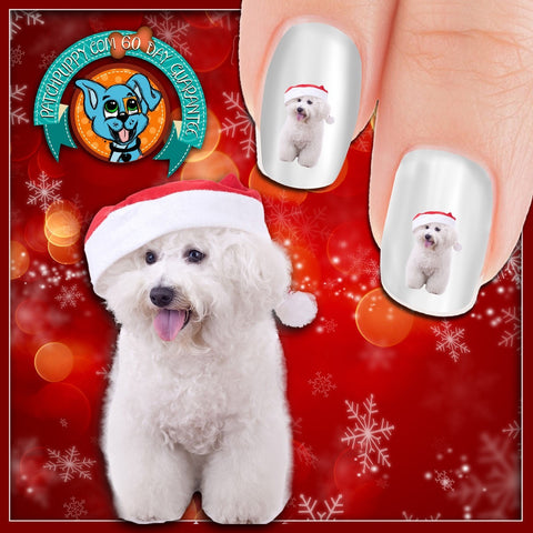 Bichon Frise with santa hat Nail Art (Now 50% More FREE)