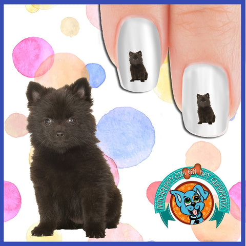 Black Pomeranian Puppy Nail Art Decals (Now 50% more!)