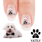 Maltese Black Tie - Nail Art Decals (Now! 50% more FREE)