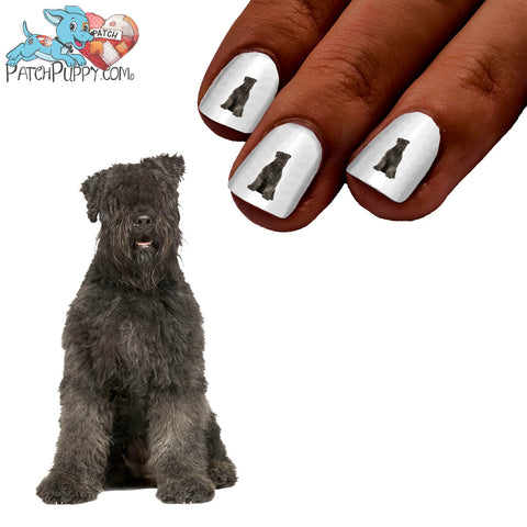 Bouvier Des Flandres Sitting Nail Art (NOW 50% MORE FREE)
