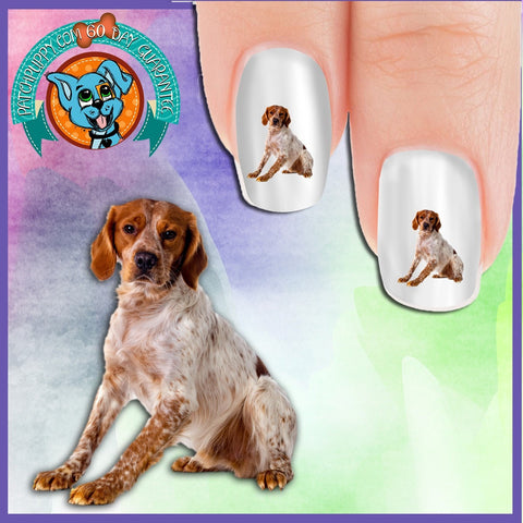Brittany Sitting Nail Art Decals (Now! 50% more FREE)