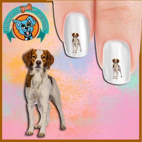 Brittany Standing Nail Art Decals (Now! 50% more FREE)