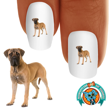 Bullmastiff Big Boy Nail Art (NOW 50% MORE FREE)
