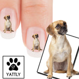 Puggle How can you resist me? Nail Art (NOW 50% MORE FREE)
