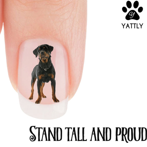 Rottweiler Standing tall and proud Nail Art (NOW 50% MORE FREE)
