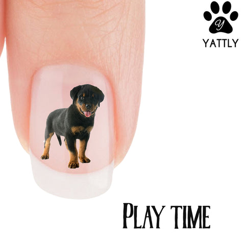 Rottweiler Play Time Nail Art (NOW 50% MORE FREE)