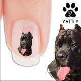 Cane Corso Mastiff Nail Art Decals (Now! 50% more FREE)