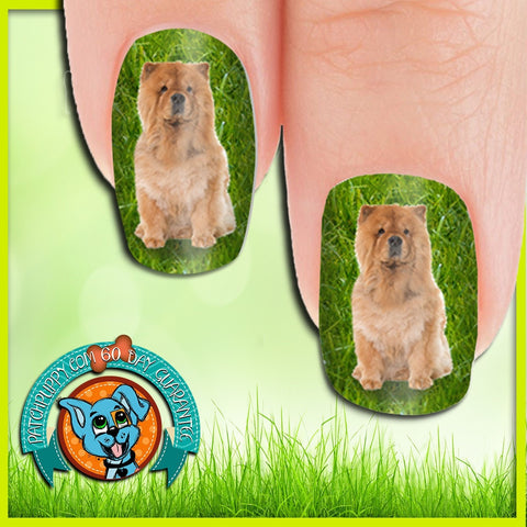 Chow in Grass Nail Wraps