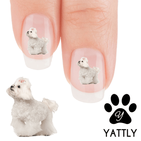 Maltese Cutie Pie - Nail Art Decals (Now! 50% more FREE)