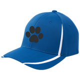 Paw Print Flexfit Colorblock Cap