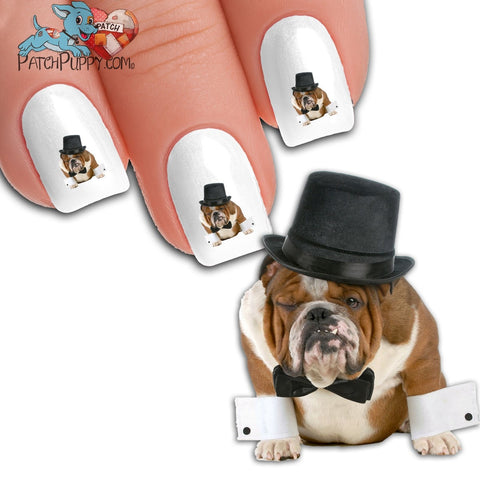 English Bulldog Blacktie Nail Art Decals ( NOW 50% MORE FREE)