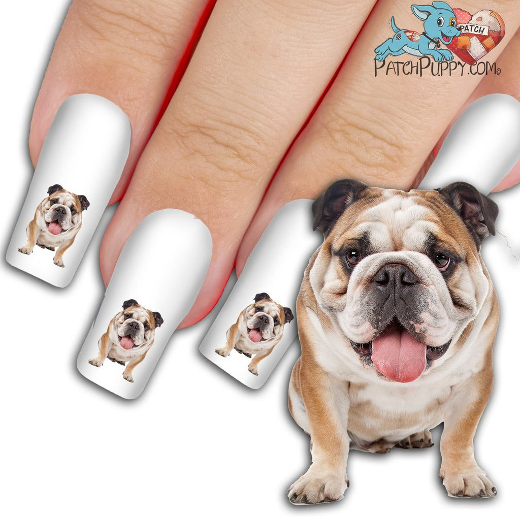 English Bulldog WOOF! Did You Say Treat! Nail Art Decals (Now 50 ...