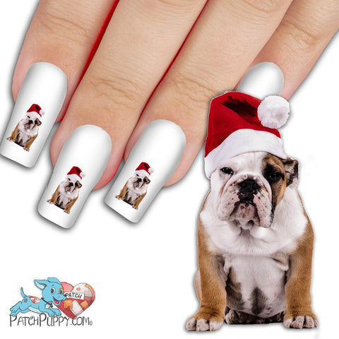English Bulldog in Santa Hat Nail Art Decals (Now! 50% more FREE)