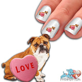 English Bulldog with Candy Heart Nail Art Decals (Now! 50% more FREE)