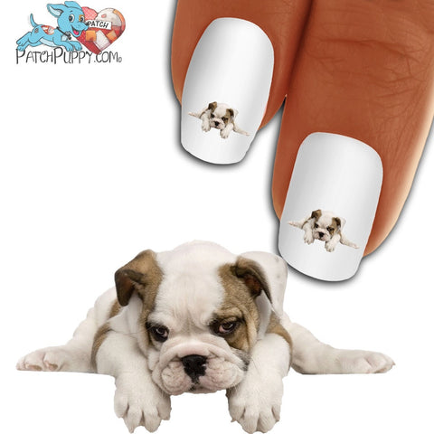 English Bullie Just One Of Those Days Nail Art Decals ( NOW 50% MORE FREE)