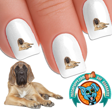 English Mastiff Floppy Nail Art Decals (Now! 50% more FREE)