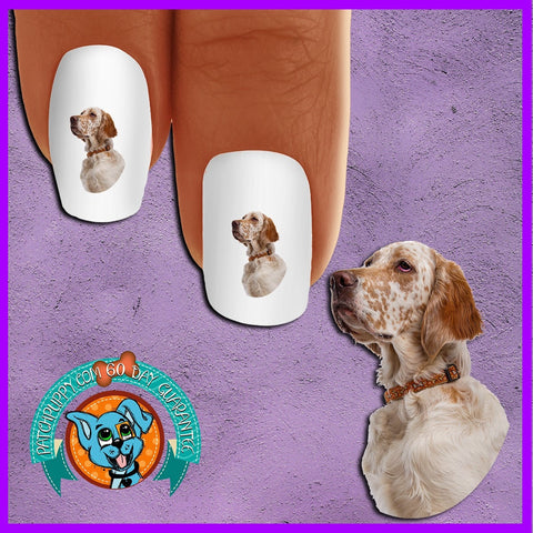 English Setter Portrait Nail Art Decals (Now! 50% more FREE)