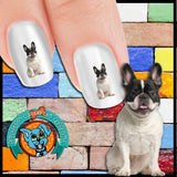 French Bulldog Black and White Nail Art Decals (Now! 50% more FREE)