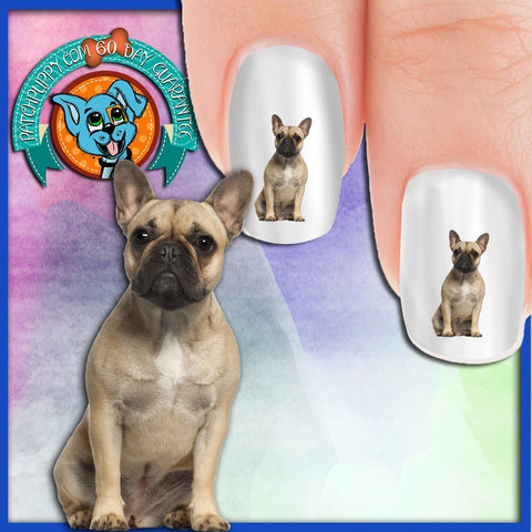French Bulldog Tan Nail Art Decals (Now! 50% more FREE)