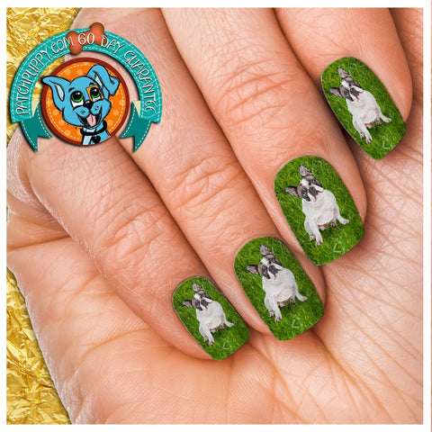 French Bulldog on Grass Nail Wraps