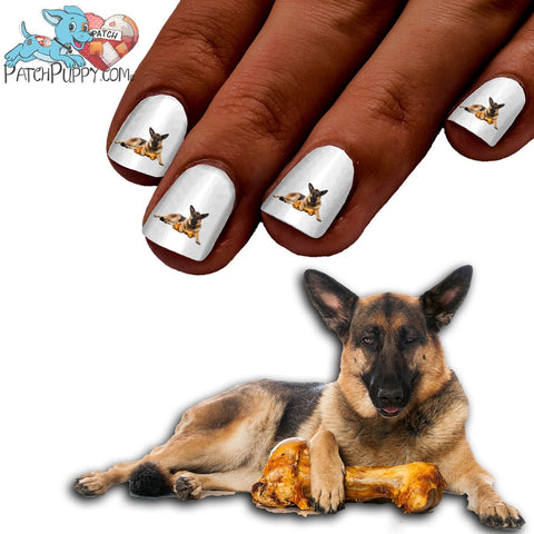 German Shepherd Don't steal my bone Nail Art Decals (NOW 50% MORE FREE)