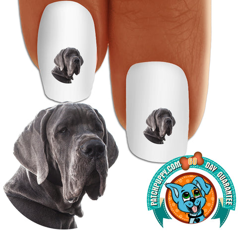 Great Dane Potrait Nail Art Decals (Now! 50% more FREE)