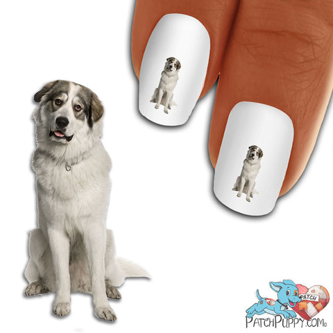 Great Pyrenees Head Tilt Nail Art (NOW 50% MORE FREE)