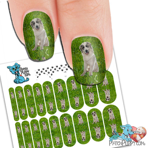Great Pyrenees on Grass Nail Wraps