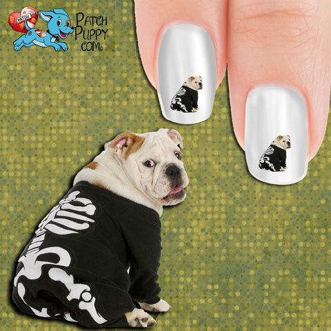 Hip Bone is connected to the Tail Bone... Nail Art Decals (Now! 50% more FREE)