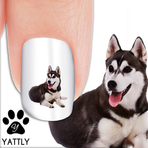 Husky Laughing - Nail Art Decals (Now! 50% more FREE)