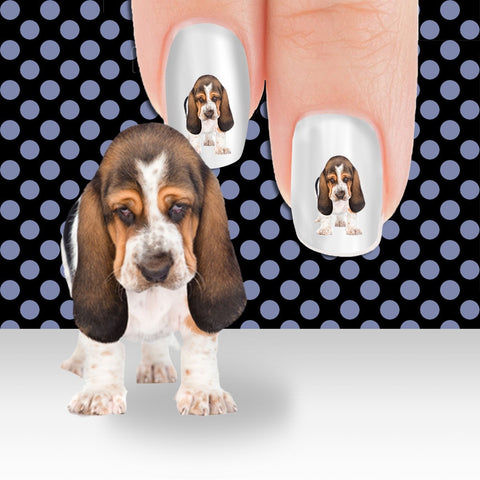 Basset Hound I'm not a morning person Nail Art Decals (Now 50% More FREE)