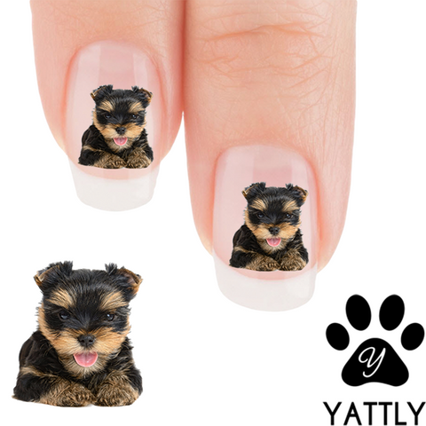 Yorkie - Puppy Love - Nail Art ( NOW 50% MORE FREE)