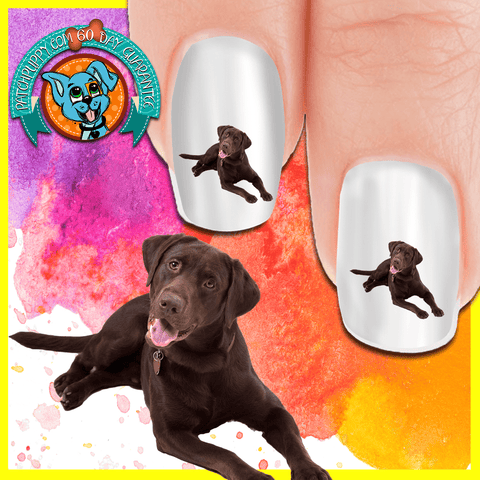 Labrador Laughing Chocolate Lab Nail Art Decals (Now 50% More FREE)