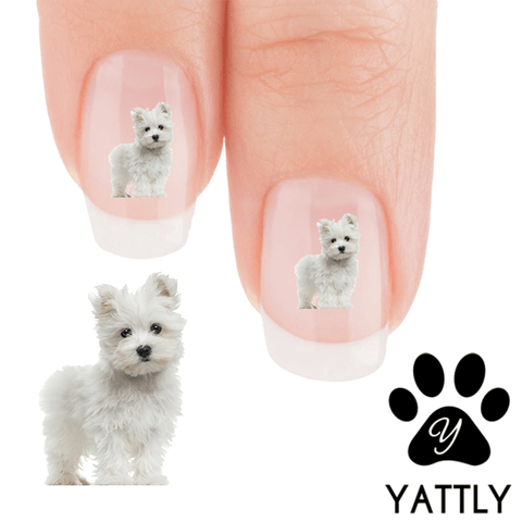 Maltese Puppy Love - Nail Art Decals (Now! 50% more FREE)