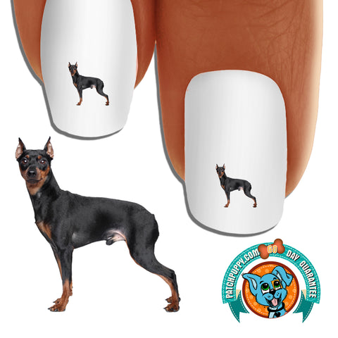 Miniature Pinscher side view Nail Art (NOW 50% MORE FREE)