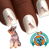 Miniature Schnauzer Loyal Nail Art Decals (NOW 50% MORE FREE)