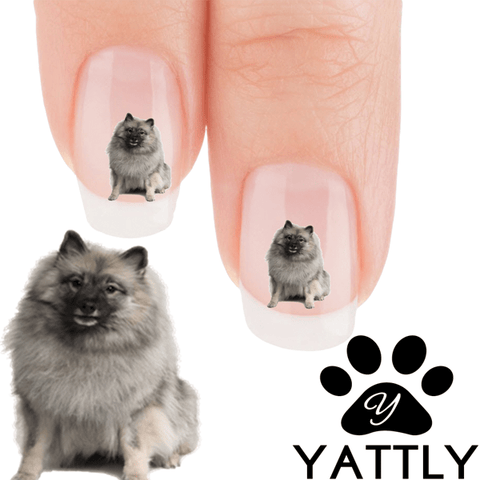 Keeshond fluffy and proud Nail Art ( NOW 50% MORE FREE)