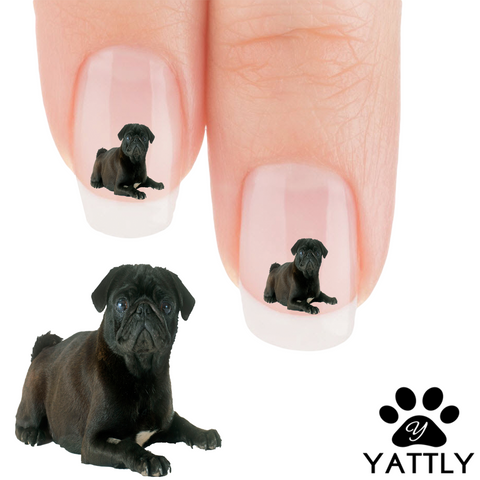 Pug Why Are You Looking At Me Nail Art Decals (Now 50% More FREE)
