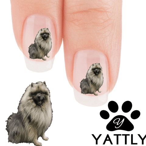 Keeshond Fabulous Nail Art (NOW 50% MORE FREE)