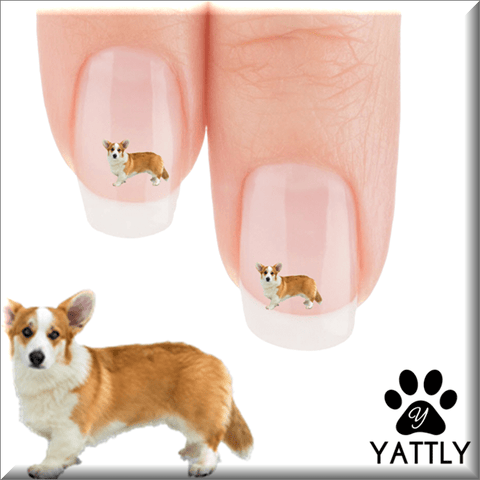 Corgi Brrrr its cold Nail Art Decals (NOW 50% MORE FREE)