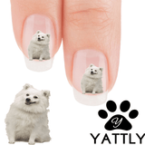 Keeshond What's up? Nail Art( NOW 50% MORE FREE)