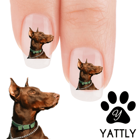 Doberman Dont touch me Nail Art ( NOW 50% MORE FREE)
