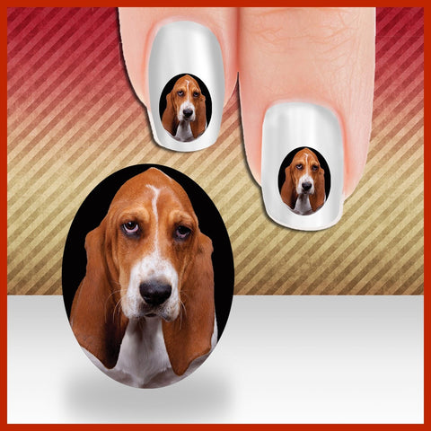 Basset Hound framed in an Oval Nail Art Decals (NOW 50% MORE FREE)