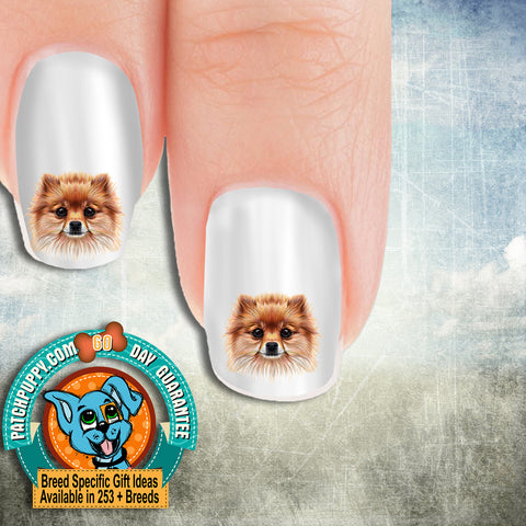 Pomeranian Drawing Nail Art Decals (Now! 50% more FREE)