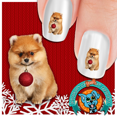 Pomeranian Help Nail Art (NOW 50% MORE FREE)