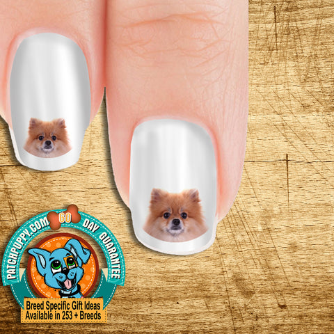 Pomeranian Portrait Nail Art Decals (Now! 50% more FREE)