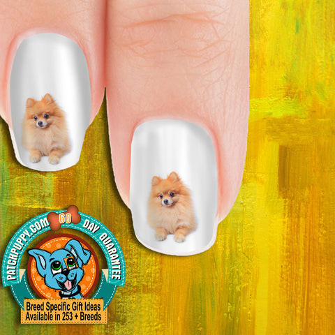 Pomeranian Sitting Nail Art Decals (Now! 50% more FREE)