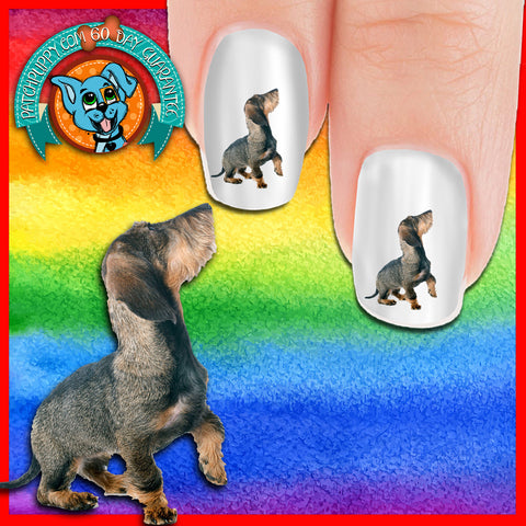 Posin Rosin Dachshund Nail Art Decals (NOW 50% MORE FREE)